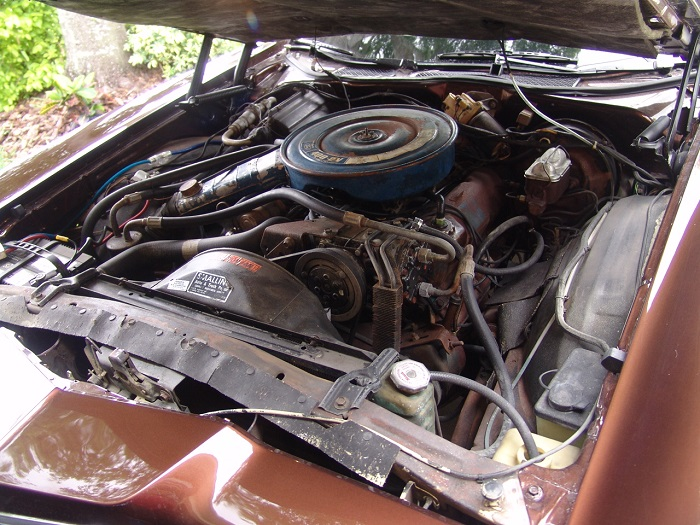 painted engine compartment pictures inspirational pictures