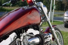 customers_bikes_1139_9